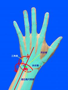 TFCC-前腕の回内と回外で痛みが出る|大阪市住吉区長居藤田鍼灸整骨院