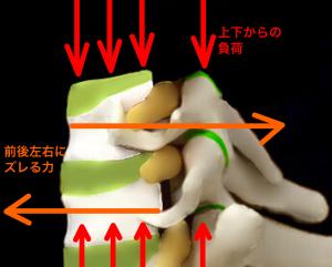 椎間板の役割|大阪市住吉区長居藤田鍼灸整骨院
