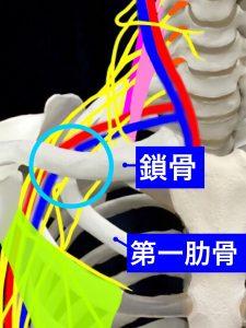 胸郭出口肋鎖症候群|大阪市住吉区長居藤田鍼灸整骨院