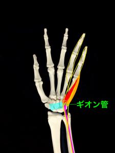 ギオン管|住吉区長居藤田鍼灸整骨院