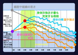 年月による身体の変化|大阪市住吉区長居藤田鍼灸整骨院