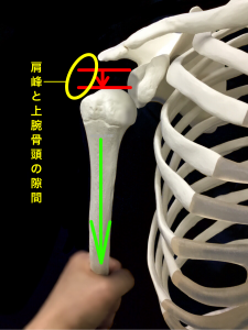 肩関節不安定症ーサルカスサイン|大阪市住吉区藤田鍼灸整骨院