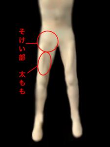 股関節を動かすそけい部、太ももの筋肉|住吉区長居西藤田鍼灸整骨院