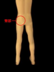 股関節障害による臀部の痛み|住吉区長居西藤田鍼灸整骨院