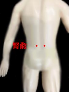 耳鳴りのツボ、腎兪|住吉区長居西藤田鍼灸整骨院