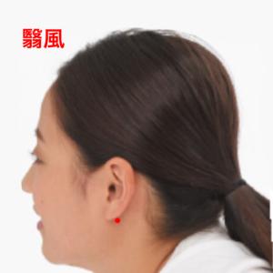 耳鳴りのツボ、翳風|大阪市住吉区長居西藤田鍼灸整骨院